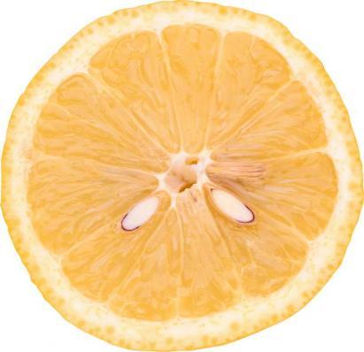 Апельсины_Лимоны